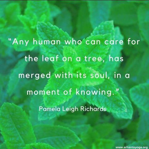 Merge with your soul quoteoftheday qotd soul teacher potd yogainspirationhellip