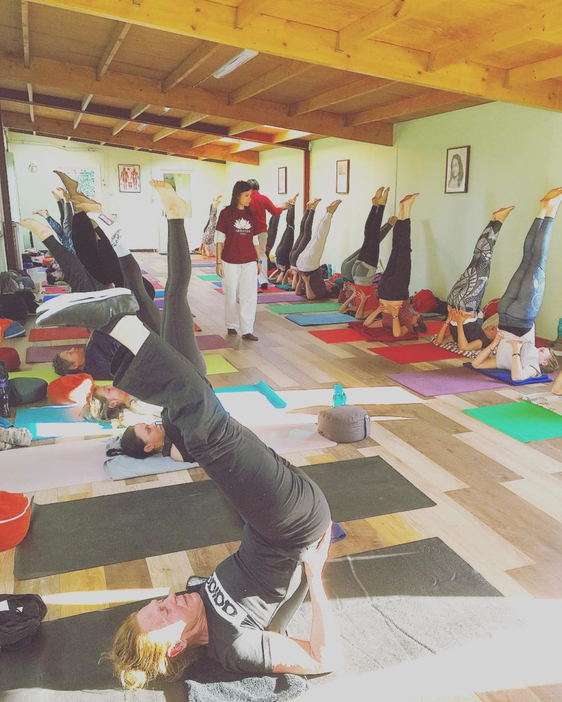 Our students enjoying our brand new and improved yoga hallhellip