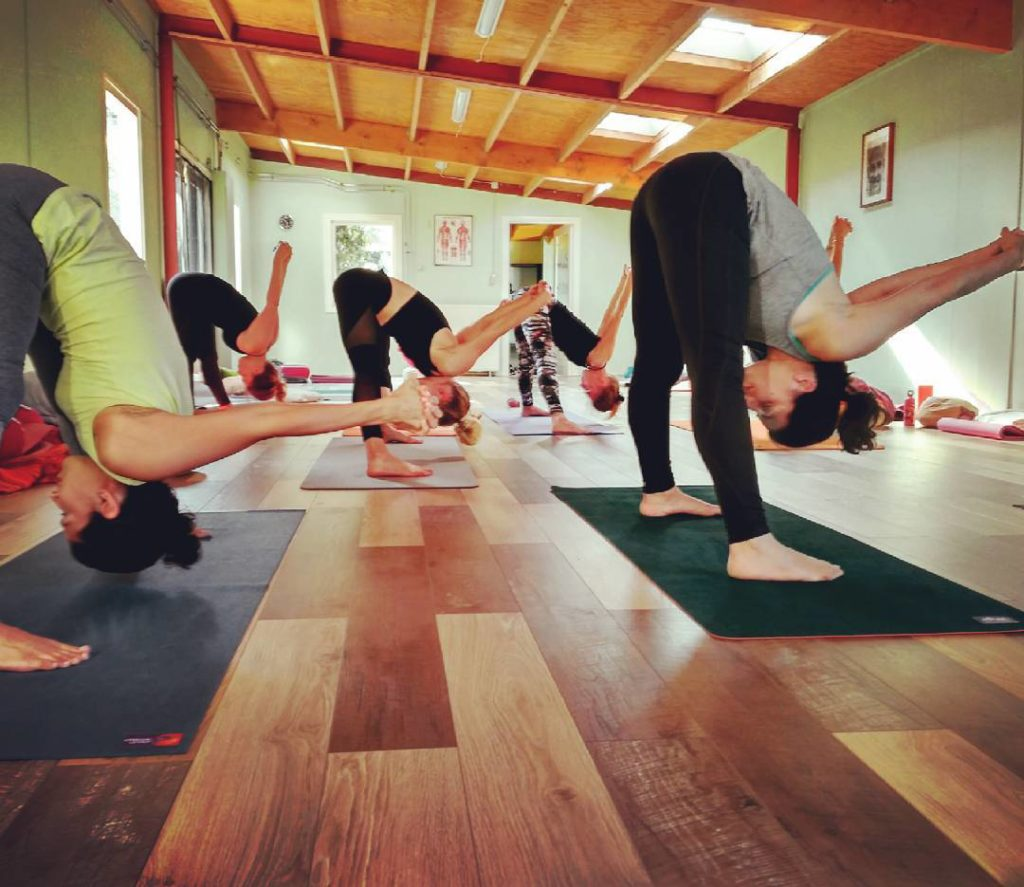 Yoga on the free day being enthusiastic yoginis  hellip